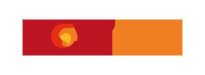 NGNI, SoftFire Logo, Projekt, 2016